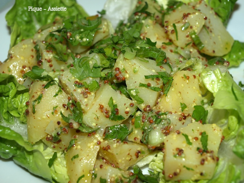 http://i70.servimg.com/u/f70/09/03/28/48/saladp12.jpg