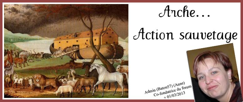 Arche... action sauvetage