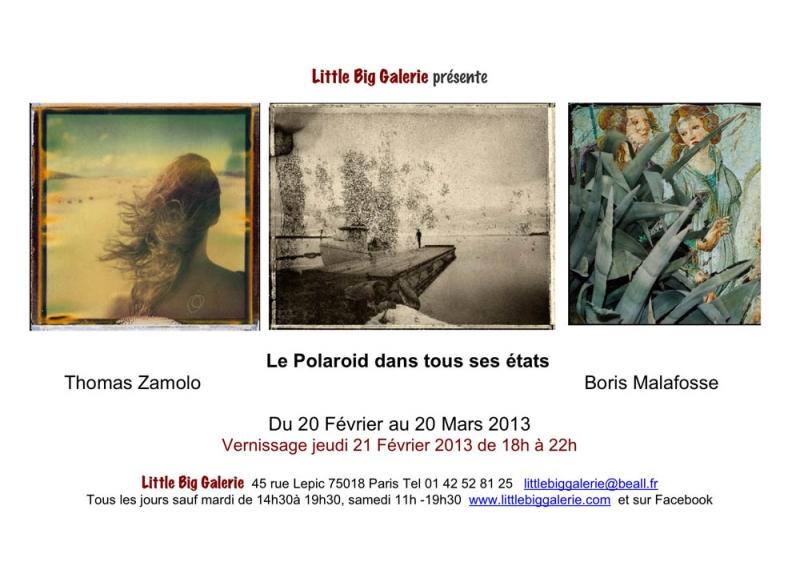 Le Polaroid dans tous ses états (Paris)