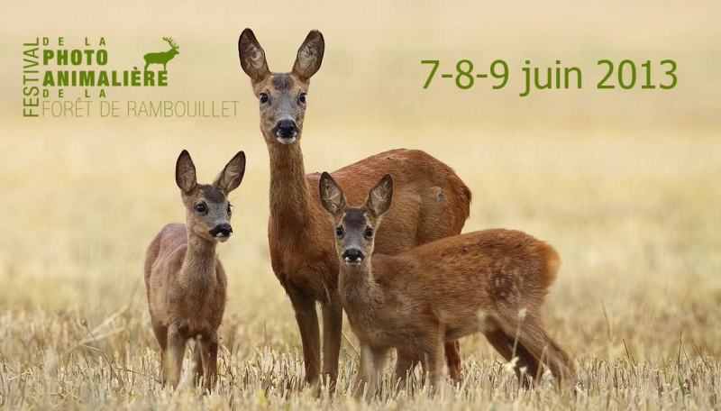 2ème Festival de la photo animalière de la forêt de Rambouillet