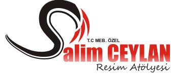 Salim Ceylan resim atölyesi logo