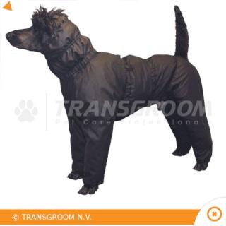 manteau pour chien avec pattes