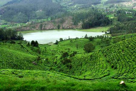 جمال الطبيعة في كيرلا في الهند لا يوصف