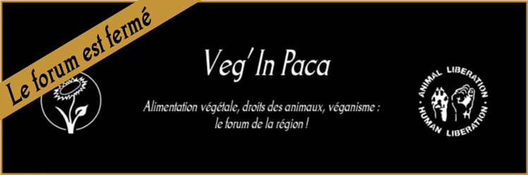 VEG' In PACA