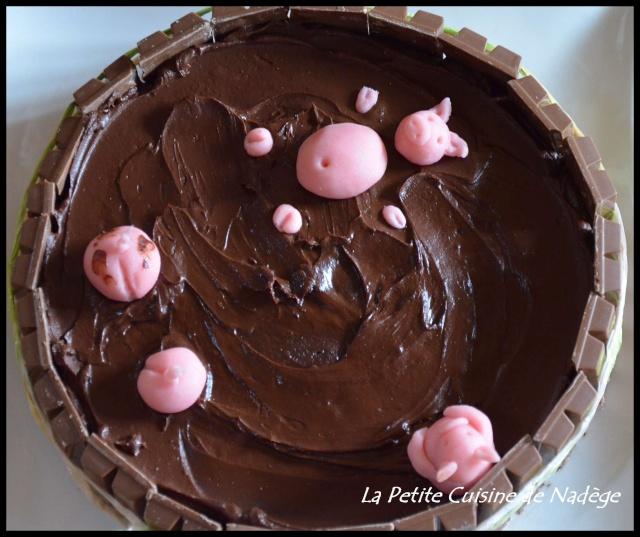 http://i70.servimg.com/u/f70/14/28/07/87/vue_de10.jpg