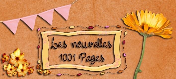 Les nouvelles 1001 pages