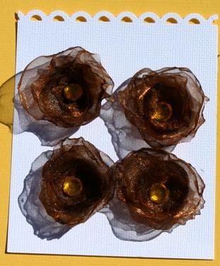 brown_11.jpg
