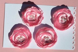 pink_s12.jpg