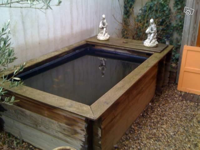 Mon bassin construction de mon nouveau bassin ext rieur for Poisson bassin exterieur achat