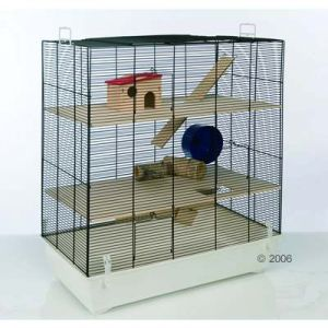 2 hamsters 1 cage comment faire une s paration. Black Bedroom Furniture Sets. Home Design Ideas