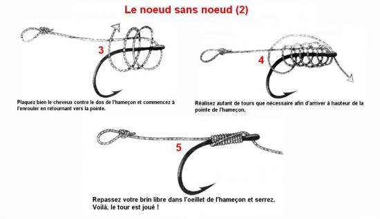 Top Sujet: Les différents type de noeud pour la peche a la carpe ID22