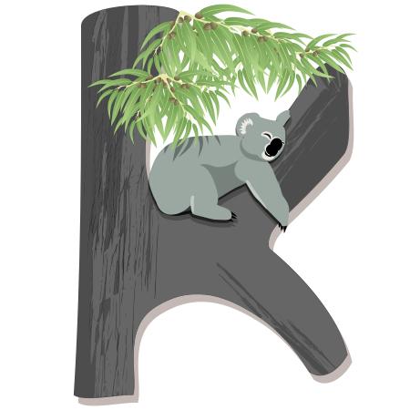 koala-10.jpg